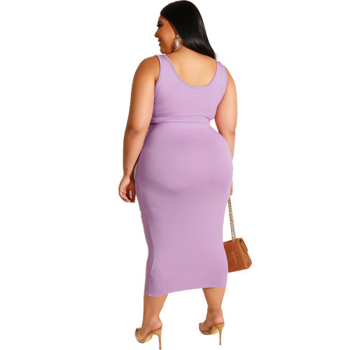 Purple  Solid Color Casual Outfits Bodycon Plus Size Two Piece Set GJ626