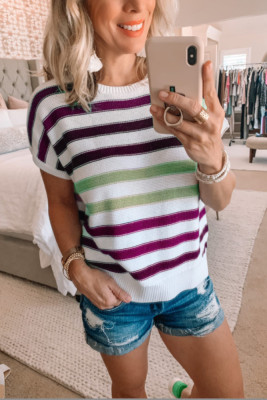 Purple Striped O-Neck Short Sleeve Knit Top