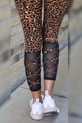 Leopard Print High Waist Legging
