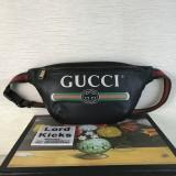 Gucci Bag  (493869)