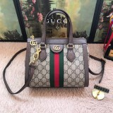 Gucci Bags  (547551)