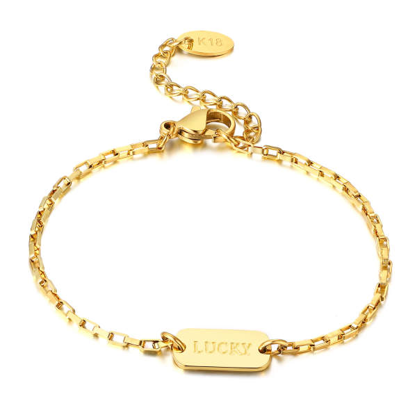 Wholesale Stainless Steel Lucky Bracelet