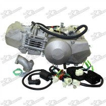 190cc Daytona 4-Valve Anima 190FLX Engine With Light System For Dirt Pit Bike