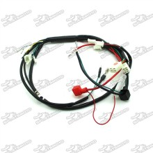 Wiring Harness Loom For 50cc-150cc Electric Start Engine M2R Lucky MX Thumpstar Explorer Pit Dirt Bike