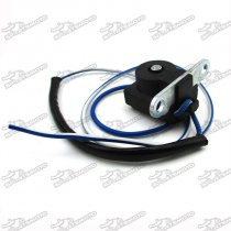 Stator Trigger Pickup Coil Ignitor For Chinese GY6 50cc 125cc 150cc Engine Scooter Moped ATV Quad Go Kart