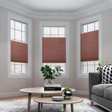 SAMANTHA Cordless Blackout Cellular Shade Top Down Bottom Up Honeycomb Blinds with White Backing