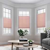 SILVIA Cordless Light Filtering Cellular Shade Top Down Bottom Up Honeycomb Blinds with White Backing