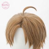 Anihut Rudeus Greyrat Cosplay Wig Mushoku Tensei Brown Heat Resistant Synthetic Rudeus Greyrat Cosplay Hair Halloween