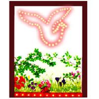 * Lighting Dove By China Magic