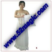 * Bag to Mantilla & Wedding Dress