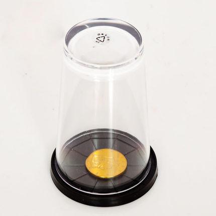 Coin Thru Glass