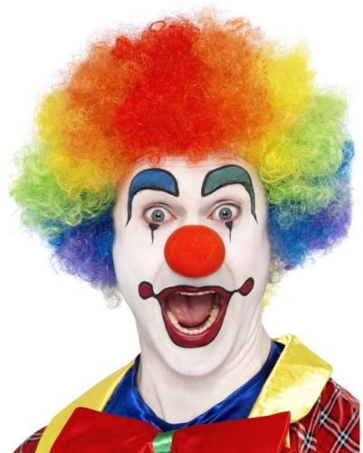 Multi Color Clown Wig