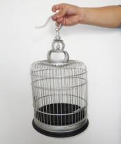 Phoenix Fire Cage
