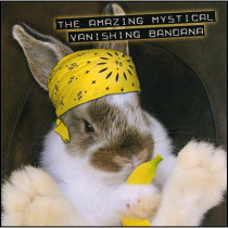Amazing Mystical Vanishing Bandana by Robert Hass