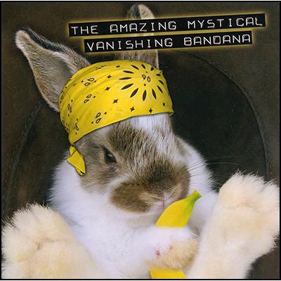 Amazing Mystical Vanishing Bandana by Robert Hass