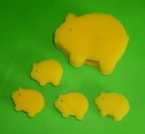 Multiplying Sponge Pig to Jumbo Mystery