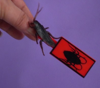 Jumping Cockroach