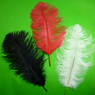 Ostrich Feathers for Appearing Cane/Vanishing Cane (3 Colors)