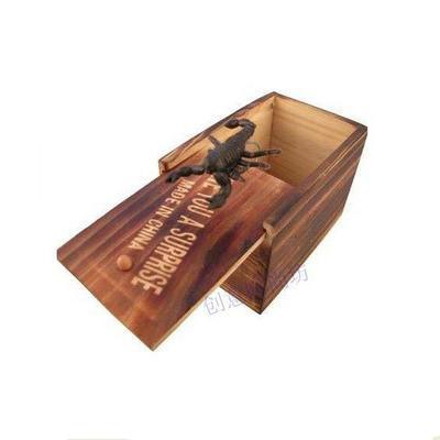Wooden Insect-Inside Box
