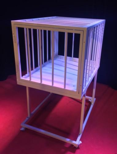 * Fire Cage Illusion