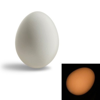 Super Rubber Egg (White/Brown)