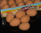 Super Rubber Egg (White/Brown)