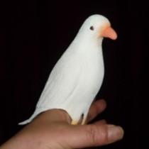 Super Latex Dove