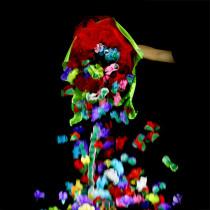 * Flowers in a Flower