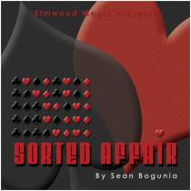 Sorted Affair (2013) by Sean Bogunia