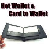 Hot Wallet & Card to Wallet