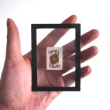 Card Changing Frame