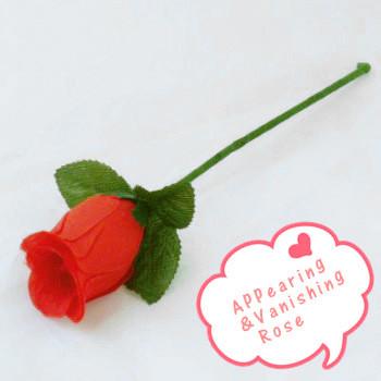 Appearing&Vanishing Rose