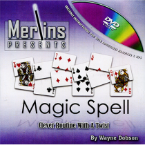 Magic Spell by Wayne Dobson
