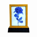 Lightning Rose Frame