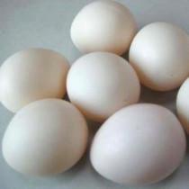 Super Plastic Egg (White, Hollow)