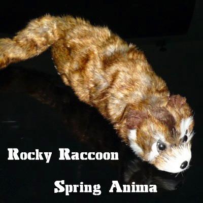 Rocky Raccoon Spring Anima
