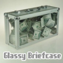 Glassy Briefcase