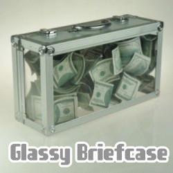 Glassy Briefcase