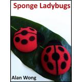 Sponge Lady Bugs by Alan Wong - Trick