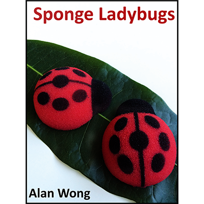Sponge Lady Bugs by Alan Wong - Trick