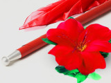 Lightning Flower to Cane (Red Cane and Red Flower)
