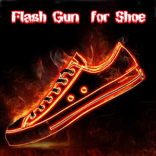 Flash Gun for Shoe