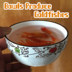 Bowls Produce Goldfishes