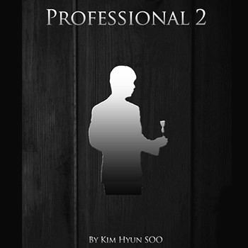 Professional 2 by Kim Hyun Soo - DVD