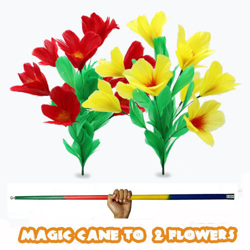 Magic Cane to 2 Flowers
