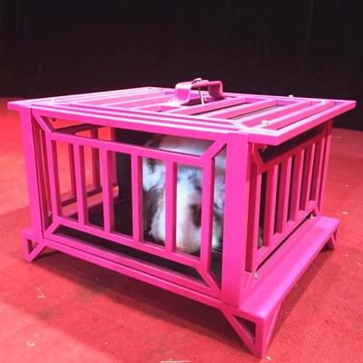 * Magical Pet Cage