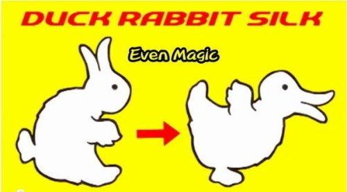 Duck-Rabbit Silk