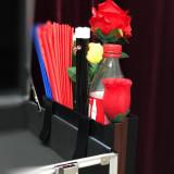 Magician's Hanging Storage Box