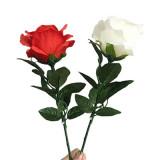 Super Light Rose (Rechargeable, 2 Colors)