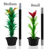 Appearing Flower (Small/Medium)